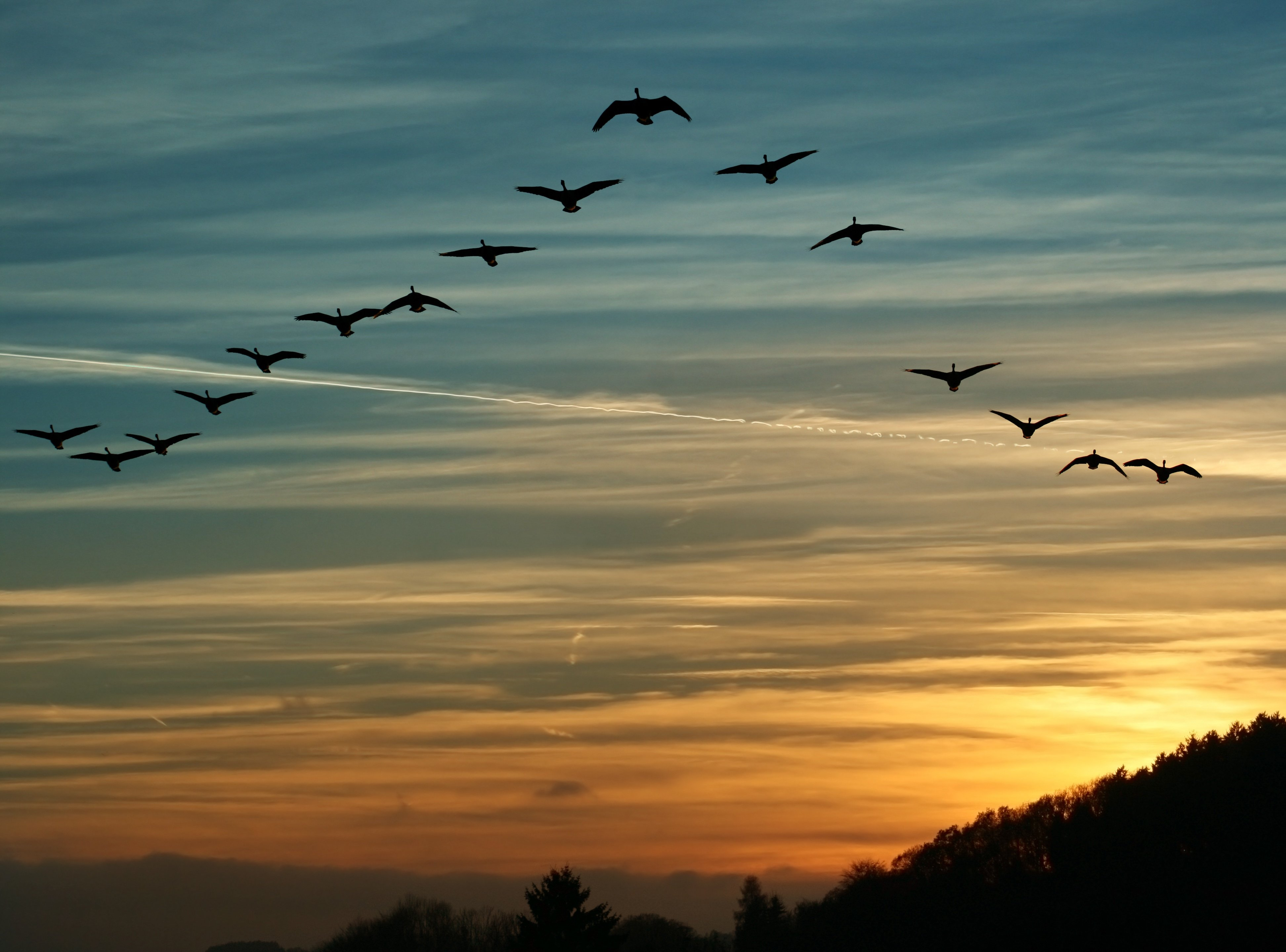 Things to Consider When Migrating Data to a New, Upgraded ERP