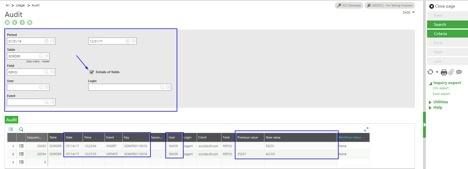 auditing fields - audit.jpg